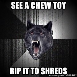 Insanity Wolf - SEE A CHEW TOY RIP IT TO SHREDS