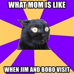 Anxiety Cat - what mom is like  when Jim and Bobo visit