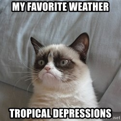 Grumpy cat 5 - My favorite weather tropical depressions