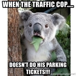 surprised koala - When the traffic Cop..... Doesn't do his parking tickets!!!