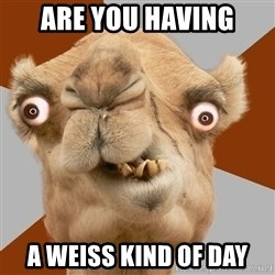 Crazy Camel lol - Are you Having a Weiss Kind of Day