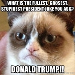 Angry Cat Meme - What is the fullest,  grosest, stupidest PRESIDENT joke you ask? Donald trump!!