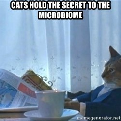 Sophisticated Cat - cats hold the secret to the microbiome