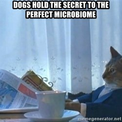 Sophisticated Cat - Dogs hold the secret to the perfect microbiome