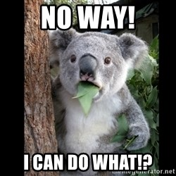 Koala can't believe it - No Way! I can do what!?