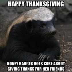 Honey Badger - Happy thanksgiving honey badger does care about Giving thanks for her frIends
