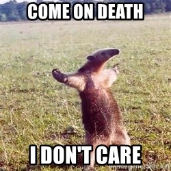 Anteater - come on death i don't care