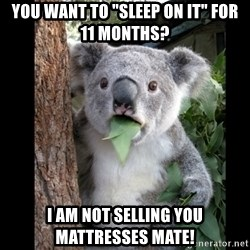"""Koala can't believe it - you want to """"sleep on it"""" for 11 months? I am not selling you mattresses mate!"""