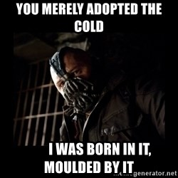 Bane Meme - you merely Adopted the COLD         I WaS BORN In IT, MOulDED BY IT
