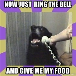 Yes, this is dog! - NOw just  ring the bell and give me my food