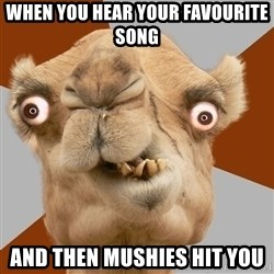 Crazy Camel lol - When you hear your favourite song and then mushies hit you