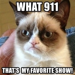 Grumpy Cat  - WHAT 911 THAT'S  MY FAVORITE SHOW!