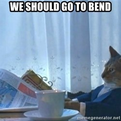 newspaper cat realization - We should go to bend