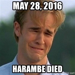 90s Problems - may 28, 2016 harambe died