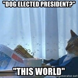 """newspaper cat realization - """"dog elected president?""""  """"this world"""""""