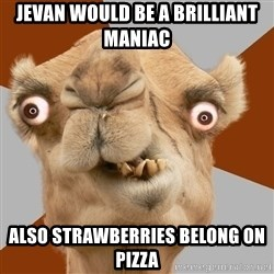 Crazy Camel lol - Jevan would be a brilliant maniac Also strawberries belong on pizza