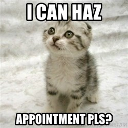 Can haz cat - I can haz Appointment Pls?