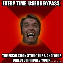 Angry Arnold - EVERY TIME, USERS BYPASS,  THE ESCALATION structure. and your director phones you!?