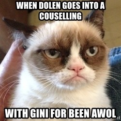Grumpy Cat 2 - WHEN DOLEN GOES INTO A COUSELLING WITH GINI FOR BEEn AWOl