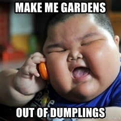 fat chinese kid - make me gardens  out of dumplings