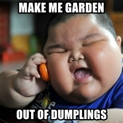fat chinese kid - make me garden out of dumplings