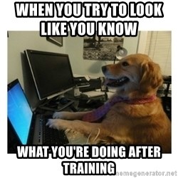 No Computer Idea Dog - WHEN YOU TRY TO LOOK LIKE YOU KNOW             WHAT YOU'RE DOING AFTER TRAINING