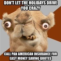 Crazy Camel lol - Don't let the holidays drive you crazy call pan american insurance for easy money saving quotes