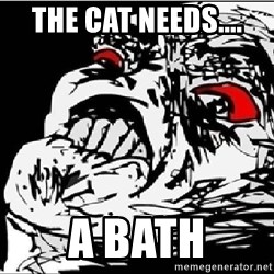 Omg Rage Face - THE CAT NEEDS.... a BATH