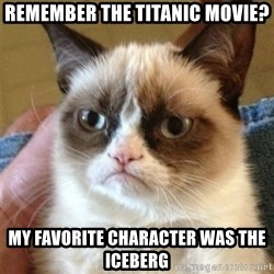 Grumpy Cat  - Remember the titanic movie? my favorite CHARACTER was the iceberg