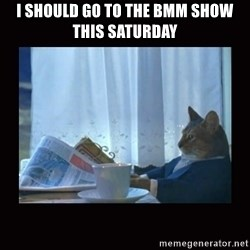i should buy a boat cat - I shoulD go to the bmm show this saturday