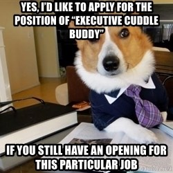 """Dog Lawyer - Yes, I'd like to apply for the position of """"Executive cuddle buddy"""" If you still have an opening for this particular job"""