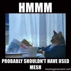i should buy a boat cat - hmmm PROBABLY SHOULDN'T HAVE USED MESH