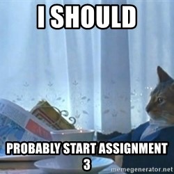 newspaper cat realization - I SHOuld Probably start assignment 3