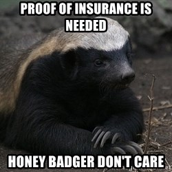 Honey Badger - proof of Insurance is needed Honey Badger don't care