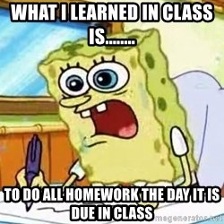 Spongebob What I Learned In Boating School Is - What i learned in class is........ to do all homework the day it is due in class
