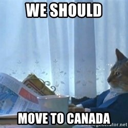 newspaper cat realization - We should Move to canada