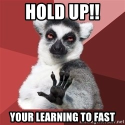 Chill Out Lemur - hold up!! your learning to fast