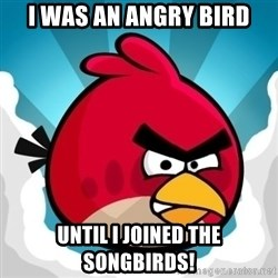 Angry Bird - I was an angry bird until i joined the songbirds!