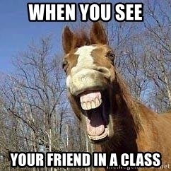 Horse - when you see your friend in a class