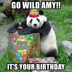 Happy Birthday Panda - Go wild amy!! It's your birthday