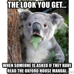surprised koala - The look you get... When someone is asked if they have read the Oxford House manual