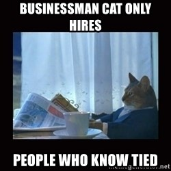 i should buy a boat cat - businessman cat only hires people who know tied