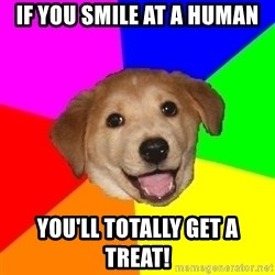 Advice Dog - If you smile at a human you'll totally get a treat!