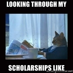 i should buy a boat cat - looking through my  scholarships like