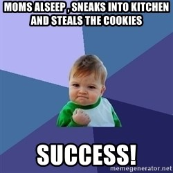 Success Kid - MOMS ALSEEP , SNEAKS INTO KITCHEN AND STEALS THE COOKIES SUCCESS!