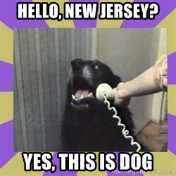 Yes, this is dog! - Hello, New Jersey? Yes, this is dog
