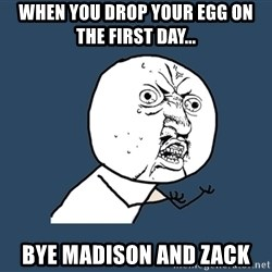 Y U No - when you drop your egg on the first day... bye madison and zack