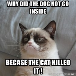 Grumpy cat 5 - Why did the dog not go inside Becase the cat killed it !
