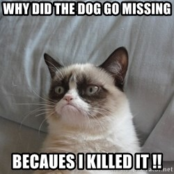 Grumpy cat 5 - Why did the dog go missing  Becaues i killed it !!