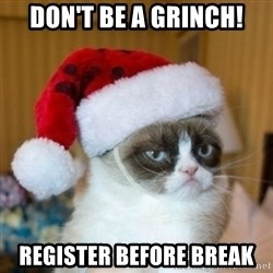 Grumpy Cat Santa Hat - Don't be a grinch! register before break